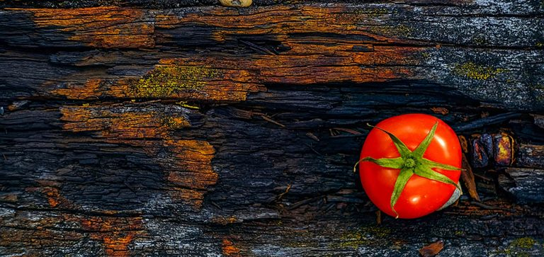 Mit einer Tomate effektiver arbeiten - die Pomodoro-Technik