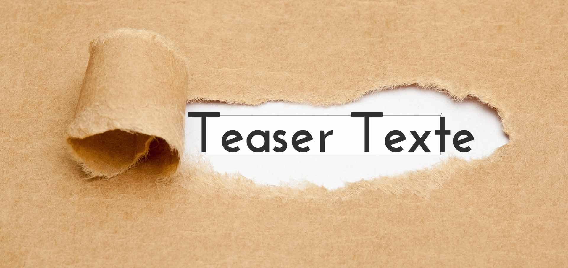 Teaser Texte