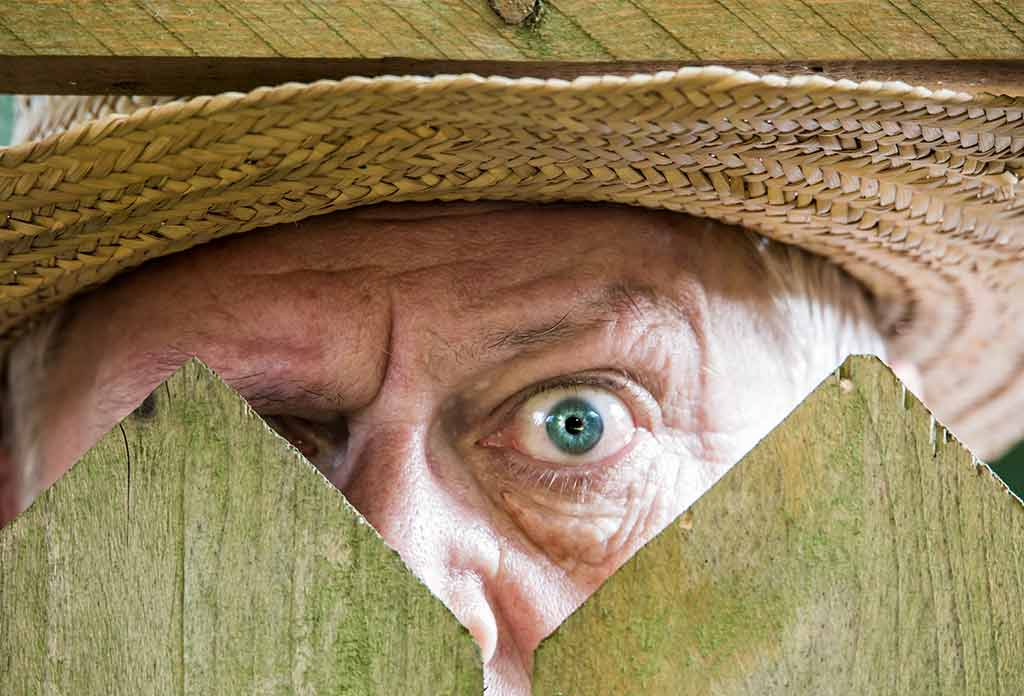Neugieriger Nachbar