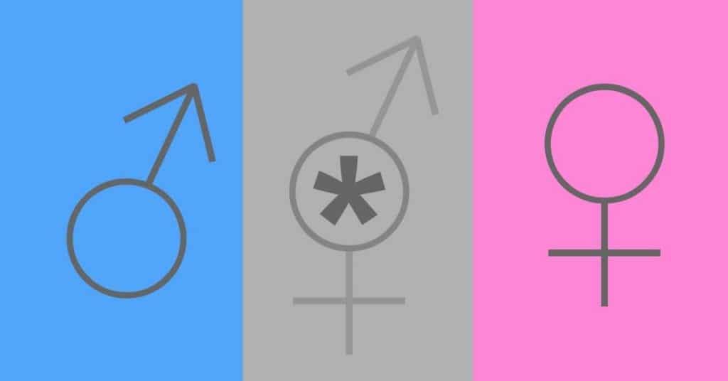 gendersternchen verstehen